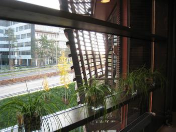 Tuulikuja 2 sisä ikkuna